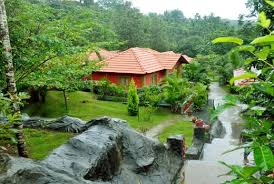 Arippara Waterfalls Hotels & Resorts