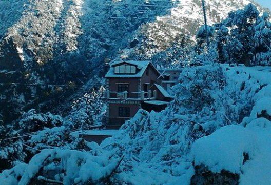Shimla Homestays